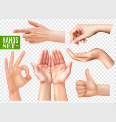 Realistic hands set transparent vector