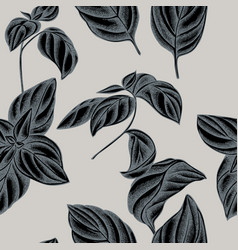 seamless pattern with hand drawn stylized basil vector image
