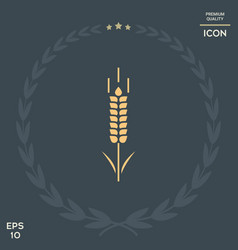 Wheat or rye spikelet symbol vector