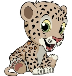 Funny little leopard vector image