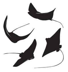 stingray silhouette vector image vector image