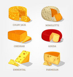 sliced french and swiss cheese food icons vector image vector image
