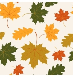 seamless with autumn maple and oak leaves vector image vector image