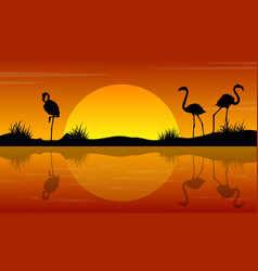 lake scenery with flamingo at sunset silhouettes vector image vector image
