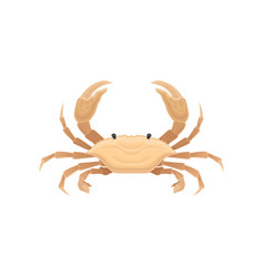 Beige crab with five pairs of legs sea creature vector