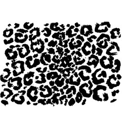black and white leopard pattern animal skin vector image