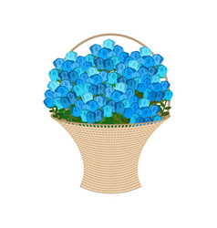 blue roses basket large bouquet of flowers vector image
