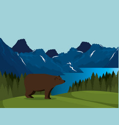 Canadian landscape with grizzly bear scene vector