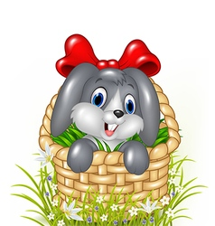 Cute little bunny in a basket with red ribbon vector