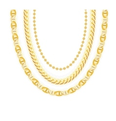 Gold Chain Jewelry vector image