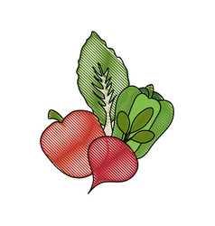 Healthy vegetables symbol vector