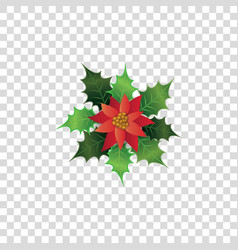 red poinsettia flower with green leaves - colorful vector image