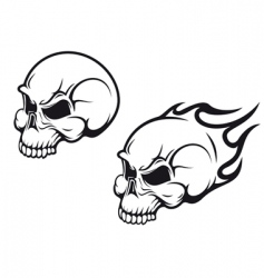 skulls tattoo vector image