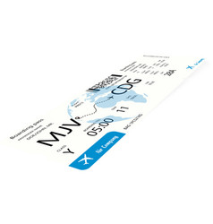 airplane ticket or boarding pass vector image