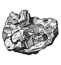 Crystalline aggregate vintage vector