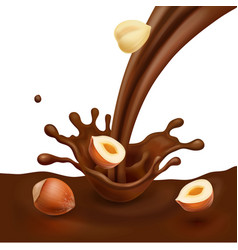 hazelnut with liquid chocolate design vector image