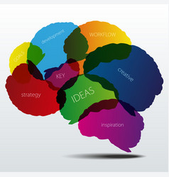 Human brain silhouette with business words vector image
