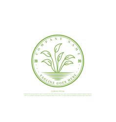Retro vintage green leaf plant grow nature herbal vector