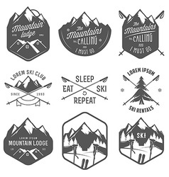 Set of vintage skiing labels and design elements vector