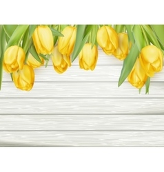 Yellow tulips eps 10 vector