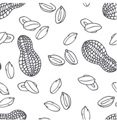 hand drawn outline seamless pattern with peanuts vector image vector image