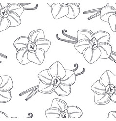 hand drawn outline seamless pattern with vanilla vector image vector image