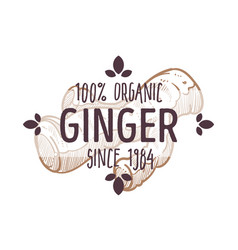 100 percent organic ginger root label for all vector