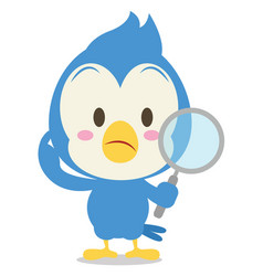 Blue jay with magnifying cartoon vector