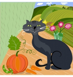 cat and pumpkin vector image