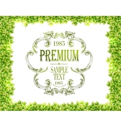 Green leaves texture and green typography vector image