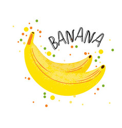 hand draw banana yellow ripe vector image