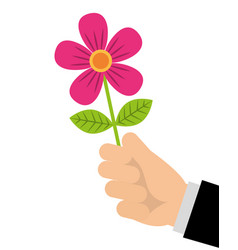 hand of man holding flower romantic gift vector image