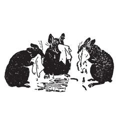 Three blind mice vintage vector