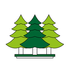 tree pines symbol vector image