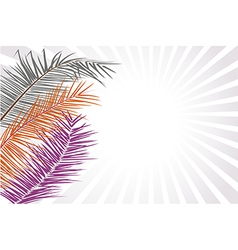 Palm Leaf or Coconut leaf Background vector image