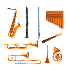 musical wind instruments set saxophone clarinet vector image