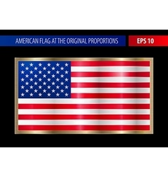 American flag in a metallic gold frame vector image