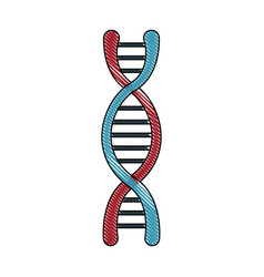 Dna molecule structure science genetic structure vector