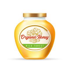 jar honey vector image