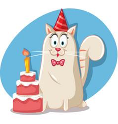 Party cat with birthday red velvet cake cartoon vector