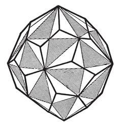 Right handed pentagonal icositetrahedron vintage vector