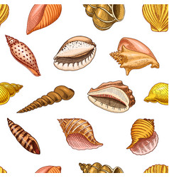Seamless pattern shells or mollusca different vector