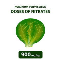 The maximum allowable dose of nitrates in cabbage vector