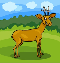 wild deer cartoon vector image