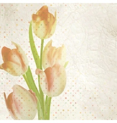 Vintage card with tulips and copyspace EPS 10 vector image vector image