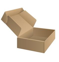 Package cardboard Box Opened vector image