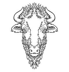 a buffalo head design on white vector image