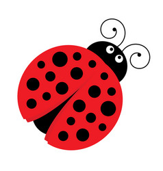 Cute cartoon ladybug vector