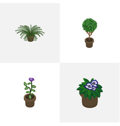 Isometric plant set of plant flowerpot tree and vector