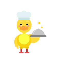 funny little yellow duckling chef holding silver vector image